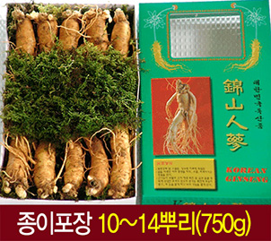 fresh insam - ginseng roots